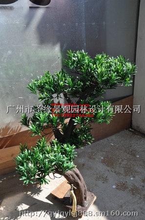 山东厂家生产仿真松柏仿真柏树制作订做仿真罗汉松