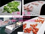 上海模组食品级塑料网带厂家 帛朗供