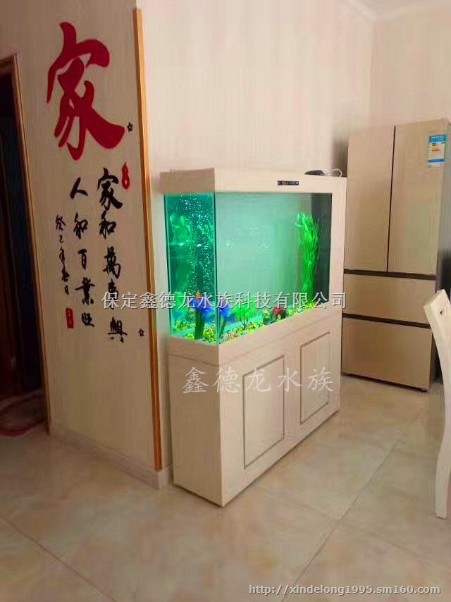 鱼缸内部设计图片欣赏