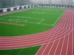 塑胶跑道施工 山东塑胶跑道施工  操场施工
