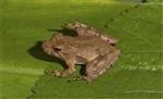 邢台中蜂养殖方法一池天下