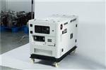双缸水冷10KW柴油发电机