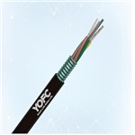 12芯阻燃长飞光缆-肇庆12芯光缆型号
