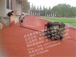 供应青岛塑胶跑道工程厂家 塑胶跑道施工 塑胶跑道工