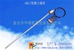 CM-12型測力錨桿