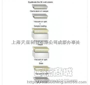 96高通量抗体纯化试剂盒