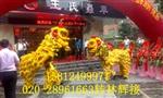 广州专业舞龙舞狮表演
