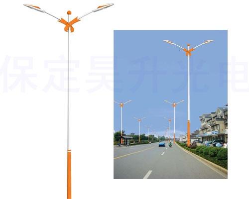 市电led路灯 60毫米锥形杆