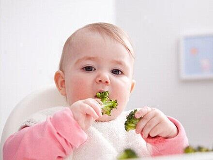【宝宝冬季饮食注意事项】其他商务服务批发价格