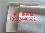 安徽復合土工膜生產廠家-600克一布一膜價格