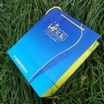 厦门纸袋订做/礼品纸袋定做/牛皮纸袋定做/广告纸袋
