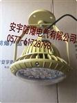 节能灯-工厂弯灯FAD-E30b1-壁式-护栏式