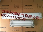 BYS-2X36W 全塑防爆防腐应急荧光灯