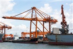 专业以旧还新码头吊回收 废旧码头吊回收价格