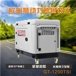 雙缸10kw靜音柴油發電機