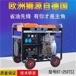 250a发电电焊两用机2019年报价
