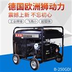 施工常用250A汽油發電電焊機