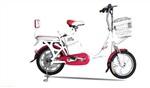 电动自行车转口规避反倾销高关税泰国转口