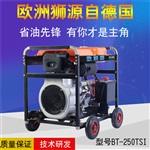 250A柴油发电焊机手推可移动
