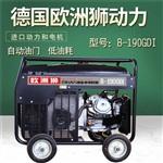 氩弧焊190A柴油发电电焊机