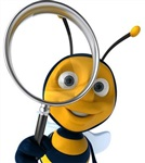 蜜蜂养殖及蜂种配送