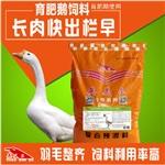 鹅育肥期饲料配方,养鹅吃什么,肉鹅饲料配方