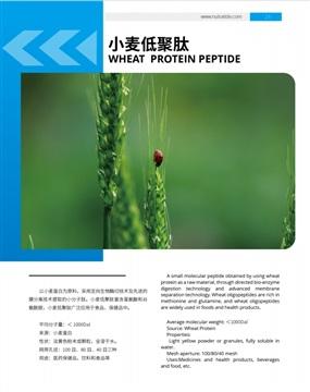 湖北健肽 小麦低聚肽 小分子肽 蛋白质分离肽 寡肽